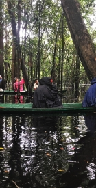peru-jungles-lodges-canoes