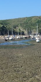 feral-human-expeditions-wales-kayaking-4