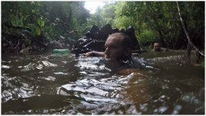 amazon survival